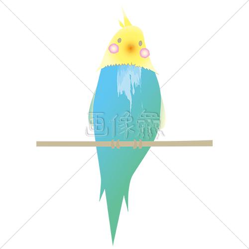 止まり木に止まる小鳥のイラスト素材5 画像衆デザインを簡単レベル